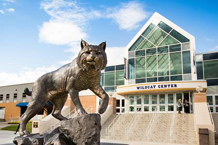 Statue of wildcat at Providence Campus